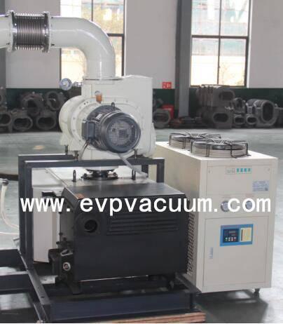 Roots Rotary Vane Vacuum System.jpg