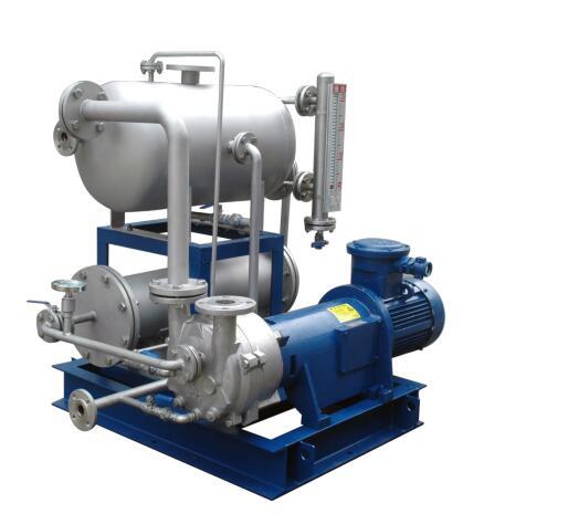 真空泵用于淡盐水脱氯行业